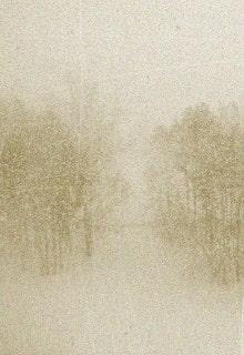 метель в лесу