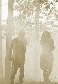 пара в мистическом лесу