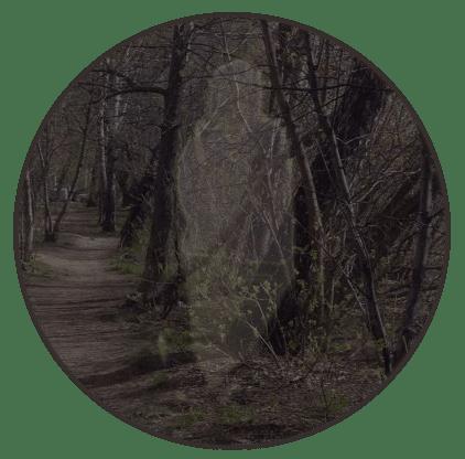 дух в парке